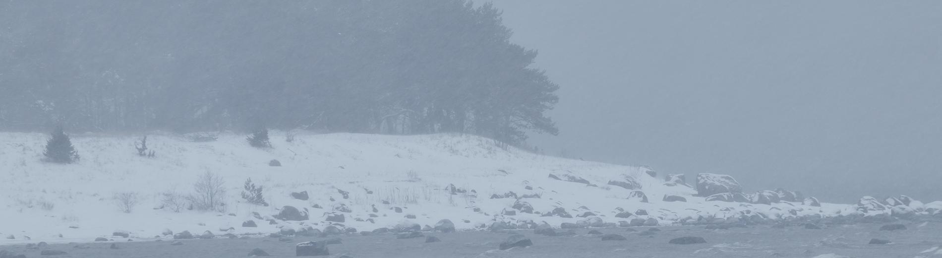 Türisalu cliff in snowstorm
