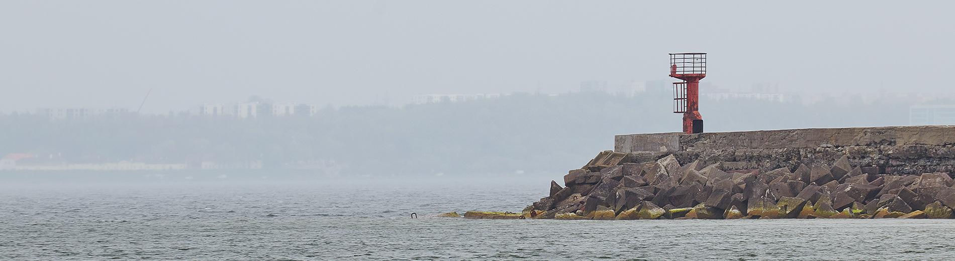 On the Paljassaare peninsula